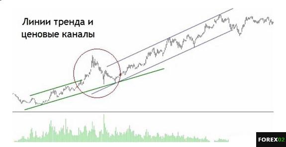 linia-trebda-bnb1