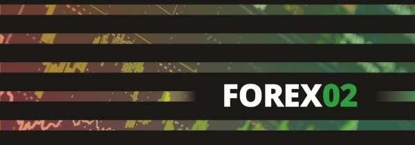 race2016-forex02