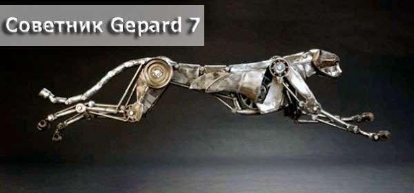 Что нужно знать о советнике Gepard 7?