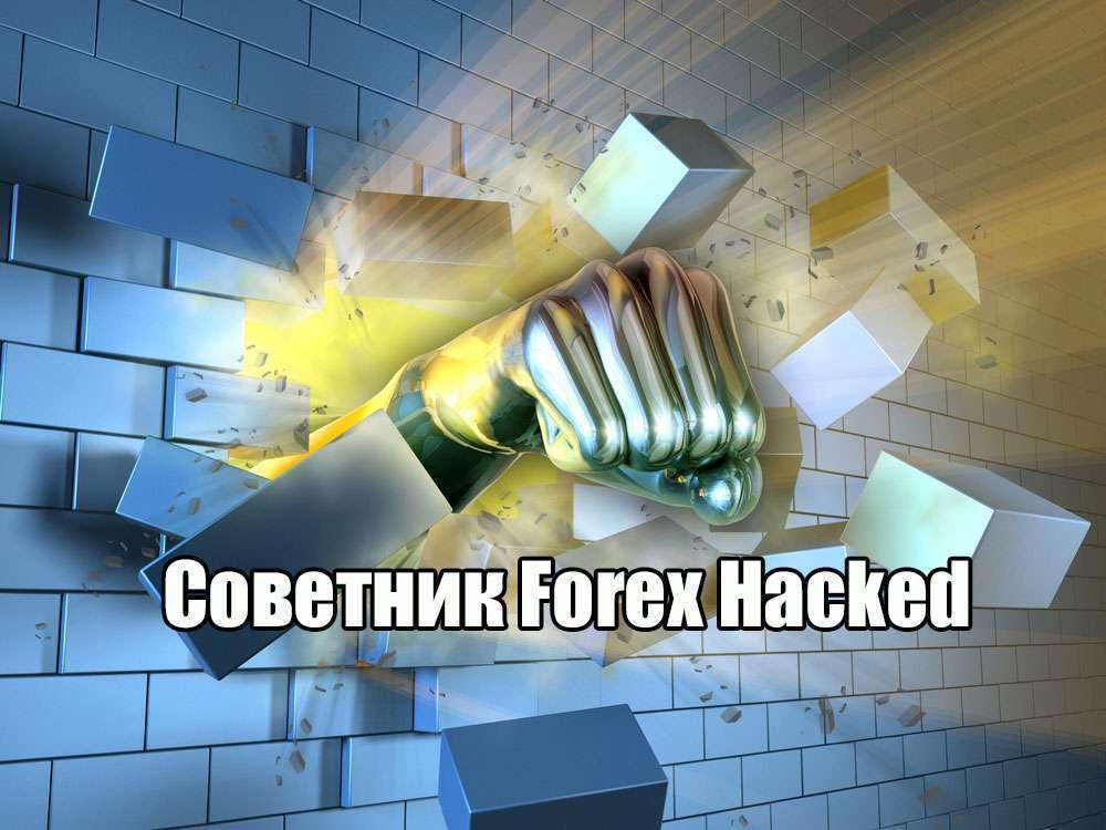 Forex Hacked – эффективное увеличение прибыли на Форекс