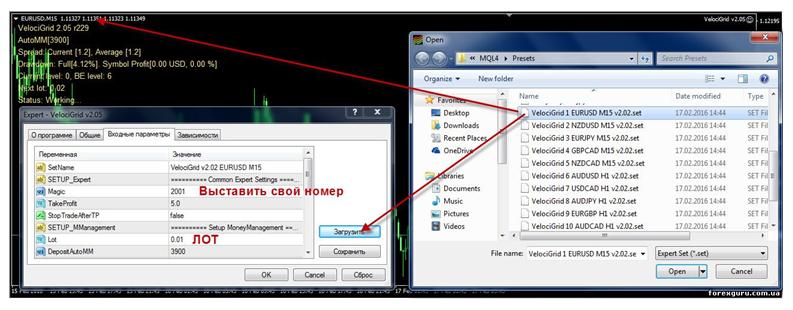 Пример установки Форекс-советника: загрузка файлов из папки, отображение поля для ввода цифровых значений и значения лота.