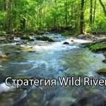Стратегия «Wild River»