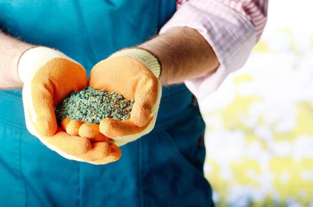Очередные ограничения в отношении России – украинские аграрии могут остаться без российских удобрений