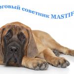 Реальные торги на основе советника MASTIF