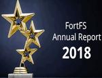 ГОДОВОЙ ОТЧЕТ FORTFS 2018