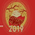 График лунных новогодних праздников 2019
