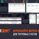 FXOpen добавил виджеты аналитики для Форекс-счетов