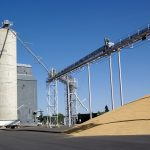 Влияние фьючерсов на пшеницу на мировой рынок зерна