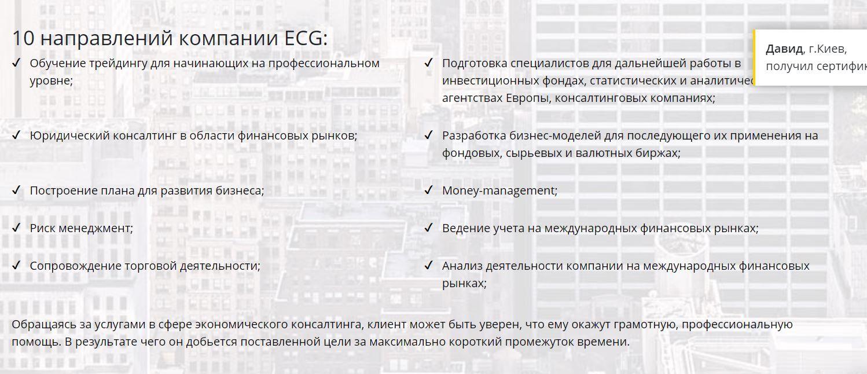 Европейская консалтинговая группа ECG направления деятельности
