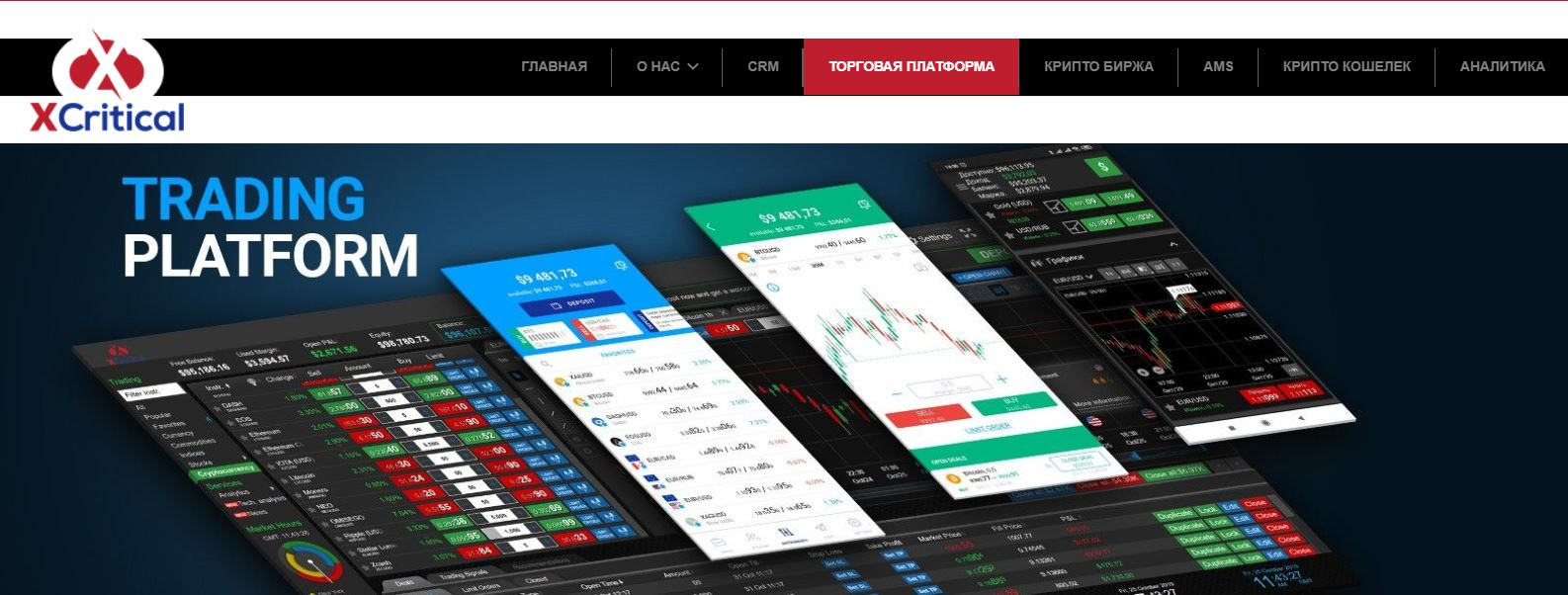 xcritical торговая платформа