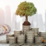 Венчурные инвестиции и фонды простыми словами: особенности и виды вложений