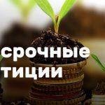 Долгосрочные инвестиции — куда вложить деньги на длительный срок