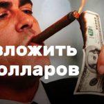 Куда вложить 500 долларов — 7 способов заработать в валюте